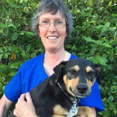 Alison Grange Veterinary Clinic